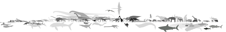 Paleo Lineup by M0AI