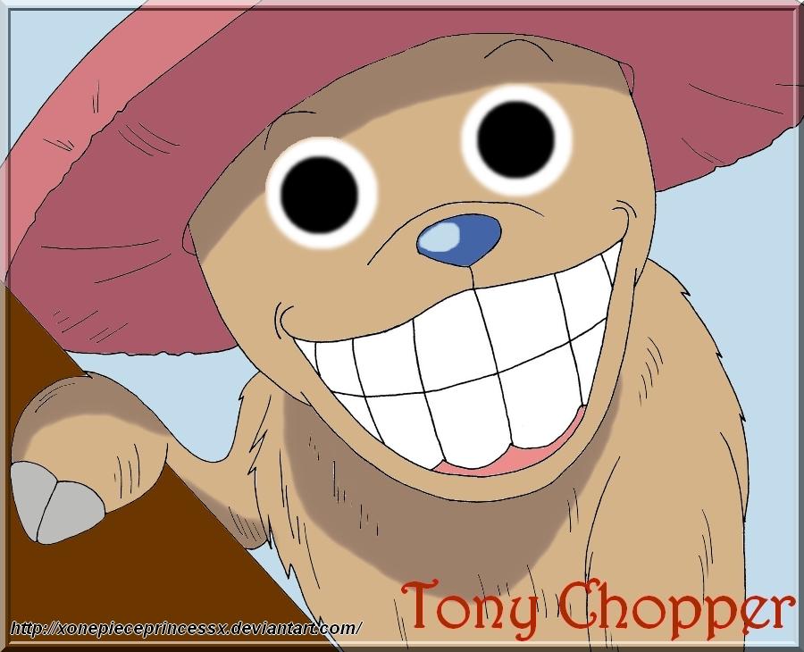 Tony tony chopper hiding tony tony chopper smile by