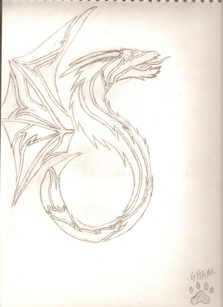tribal dragon drawings