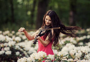 concert for flowers by baravavrova