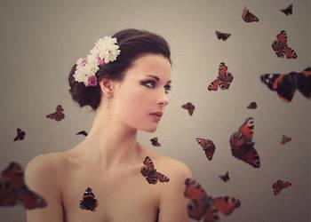 butterflies by baravavrova