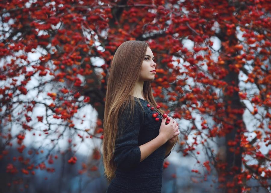 late autumn by baravavrova