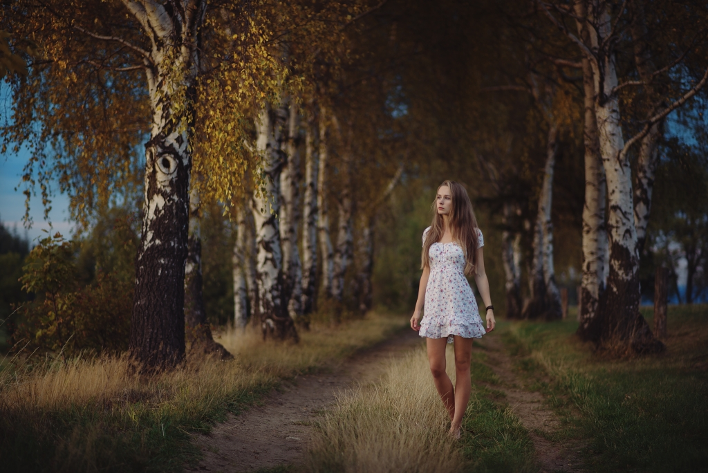 countryside by baravavrova