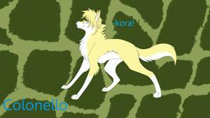 Colonello wolf by amaya-mitsuko