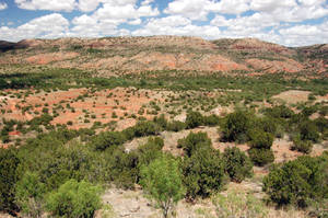 On the Caprock by Metzae