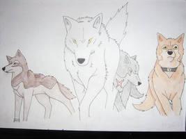 Wolfs Rain Coloured