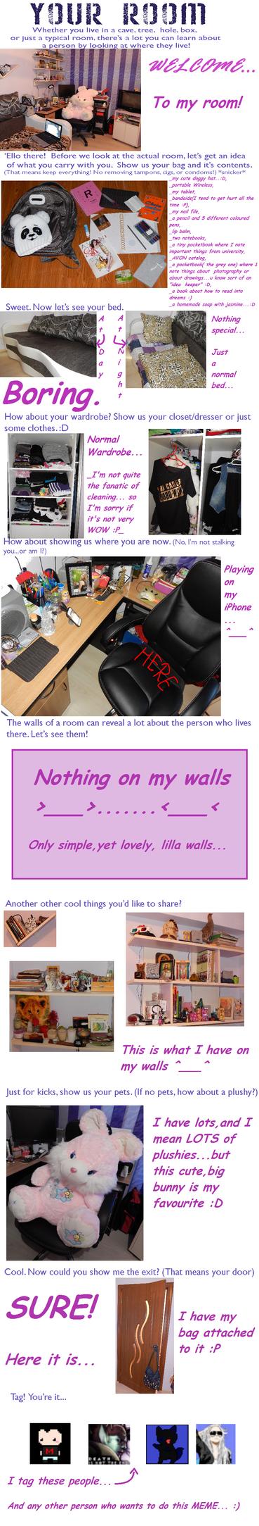 my room...meme by rocz91