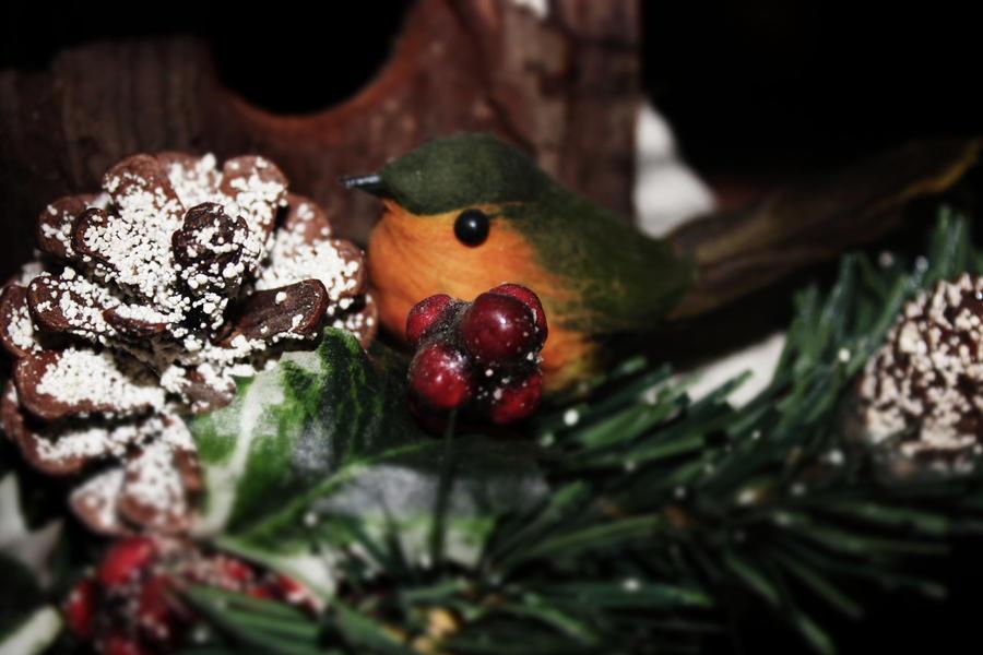 Robin by EmmaJMSaunt