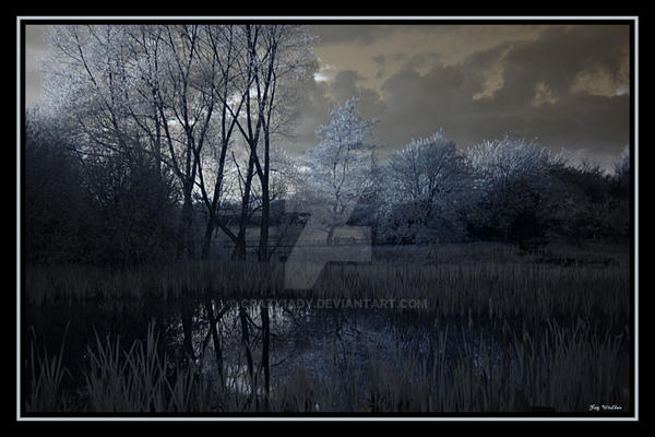 Marshland by crazy1ady