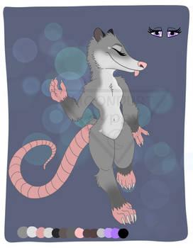 OTA Opossum (OPEN)