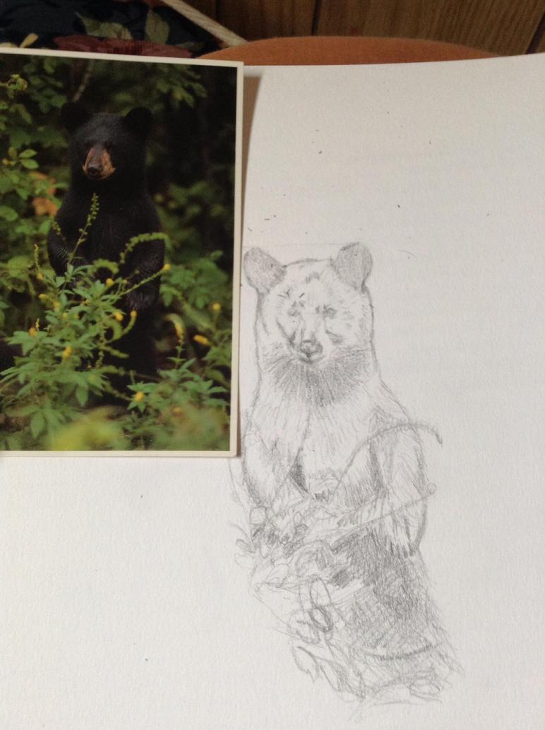 WIP black bear by TwilightRoxK