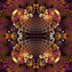 Splits-Crop by Ankoger