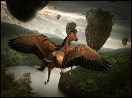 Riding the Wind by Nikkayla