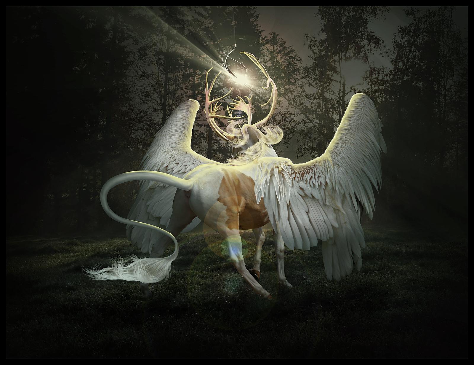 The Blind Prince by Nikkayla