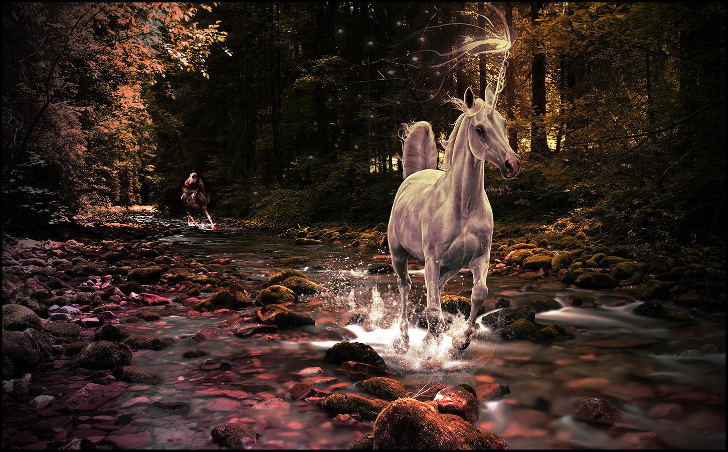 Starlight by Nikkayla