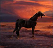 The Sunset of Fire by Nikkayla