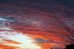 Sunset 51