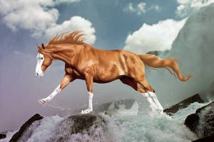 ESS for AgentDarkhorse by Nikkayla