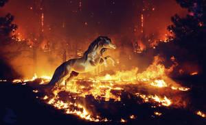 FIRE SAVE US by Nikkayla
