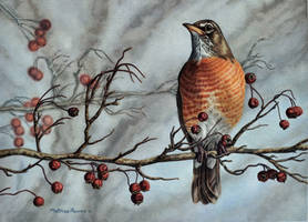 A berry wonderland by masscreation