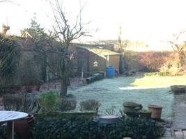Frozen garden by jomy10