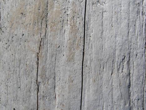 Driftwood Texture 5