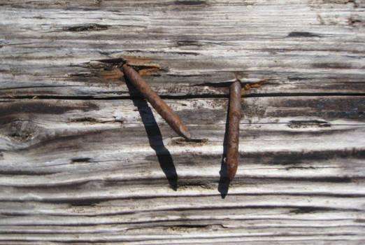 Driftwood Texture 6