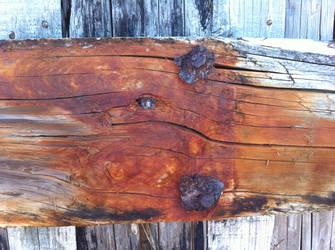Rotten Beachfront Bulkhead