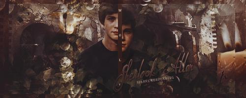 Sherlock the wolf signature by Ami-Diggory