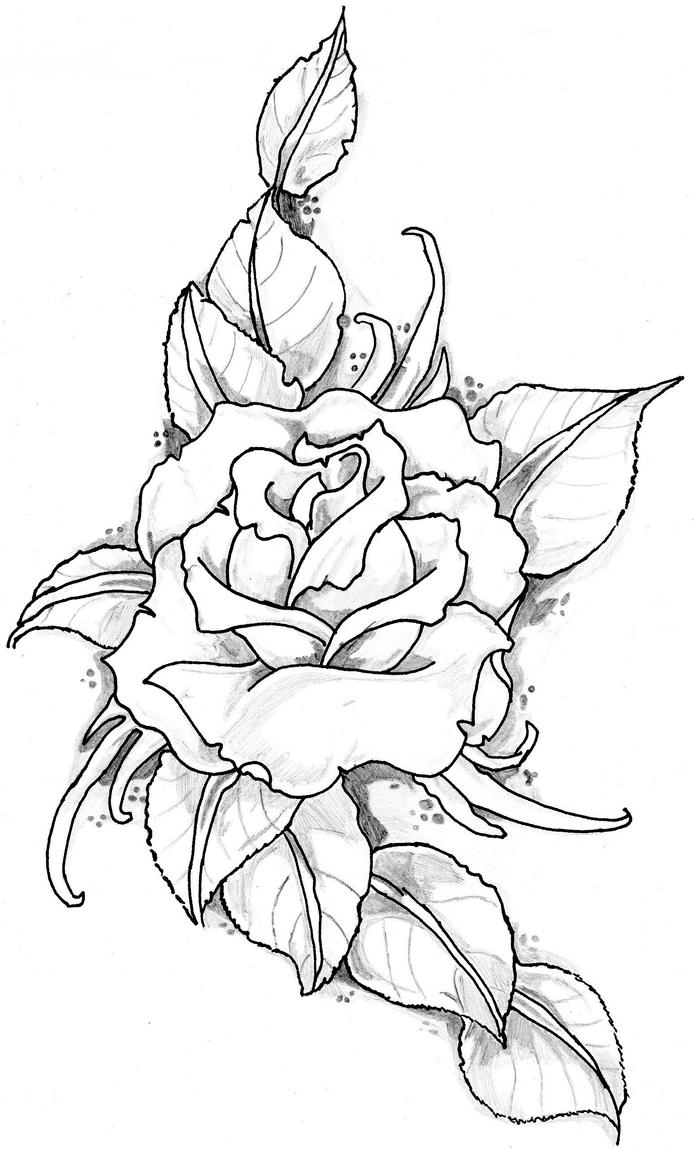 Traditional Rose Tattoo Drawing