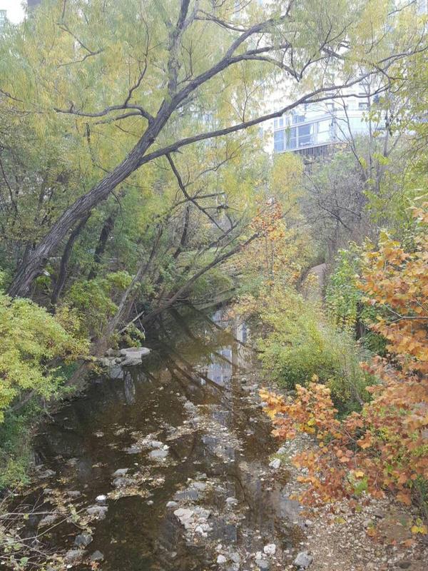 Fall Creek. 6th (?) street, Austin, Tx  by KaylynnStanley1
