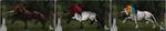 HorseAdopt 7 [OPEN] by JayOWOJo