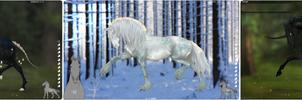 HorseAdopt 8 [OPEN]