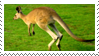 Kangaroo Stamp by fifilis