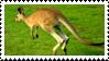 Kangaroo Stamp by fifilis