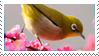 Japanese White-eye Stamp by fifilis