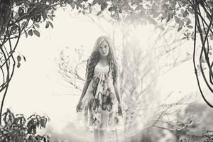 Fairies by mo-ten