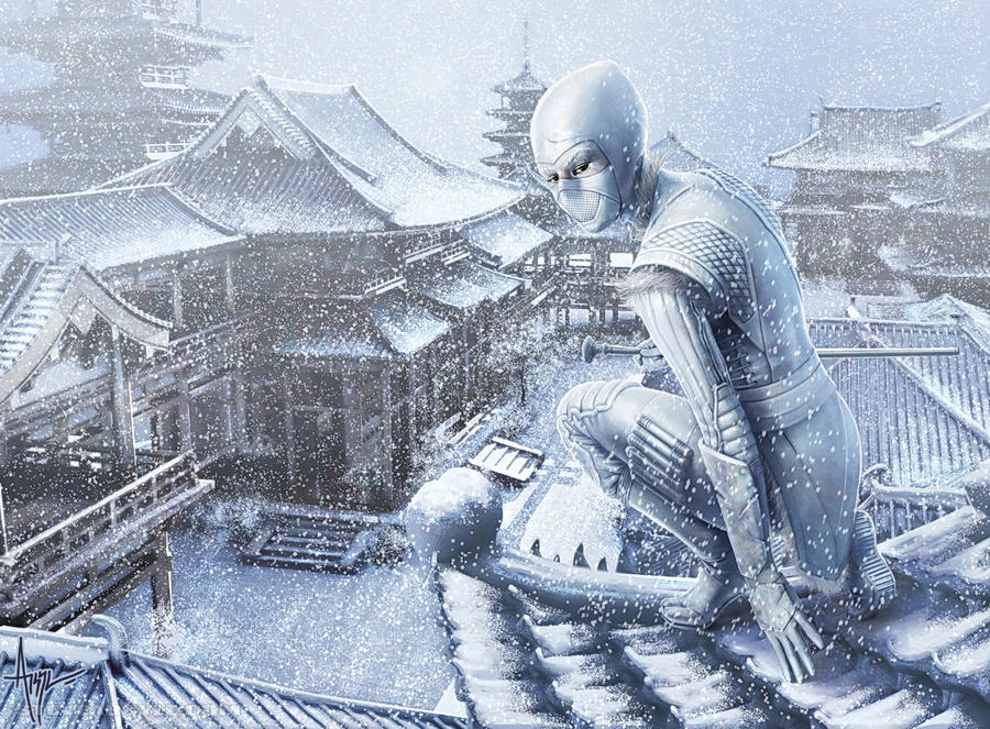 snow_assassin_by_steveargyle.jpg