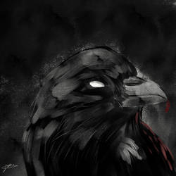 Birds of Death and Suffering