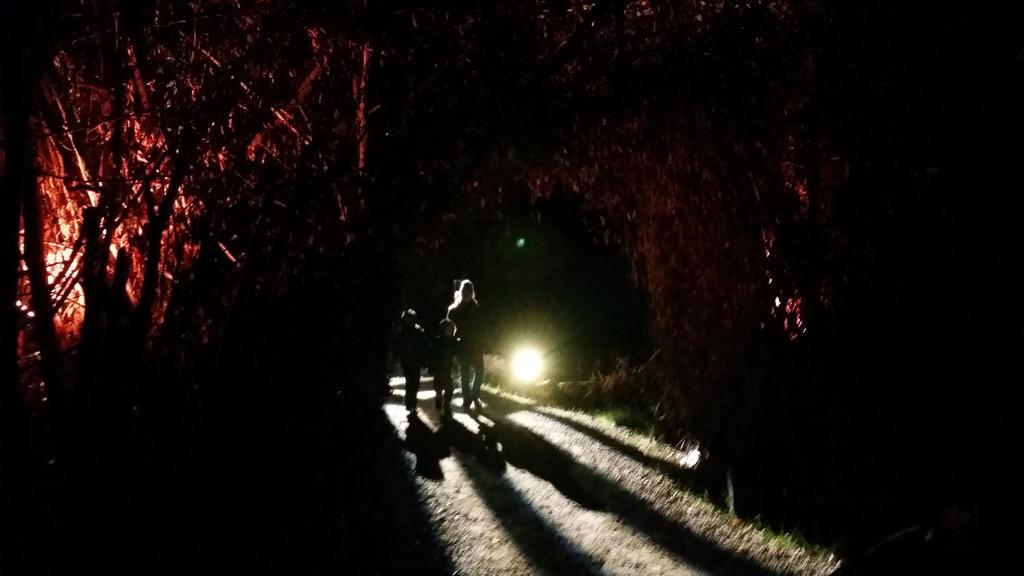 Following the Path by ThreeDeeDeemon
