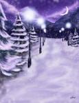 Coniferous Lights