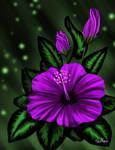 Mellow Violet