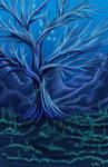 Elder Coral Tree