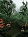 Cloudy Jungle