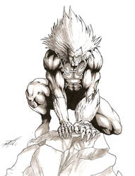 Lion-O by -vassago-