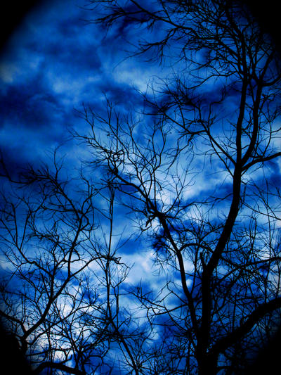 Plavo kao ... - Page 3 Blue_Rhythm____by_Dream2theMusic