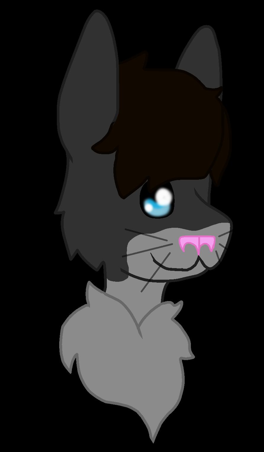 AskOncelercat's Profile Picture