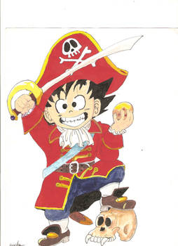 DRAGON BALL _PIRATA.