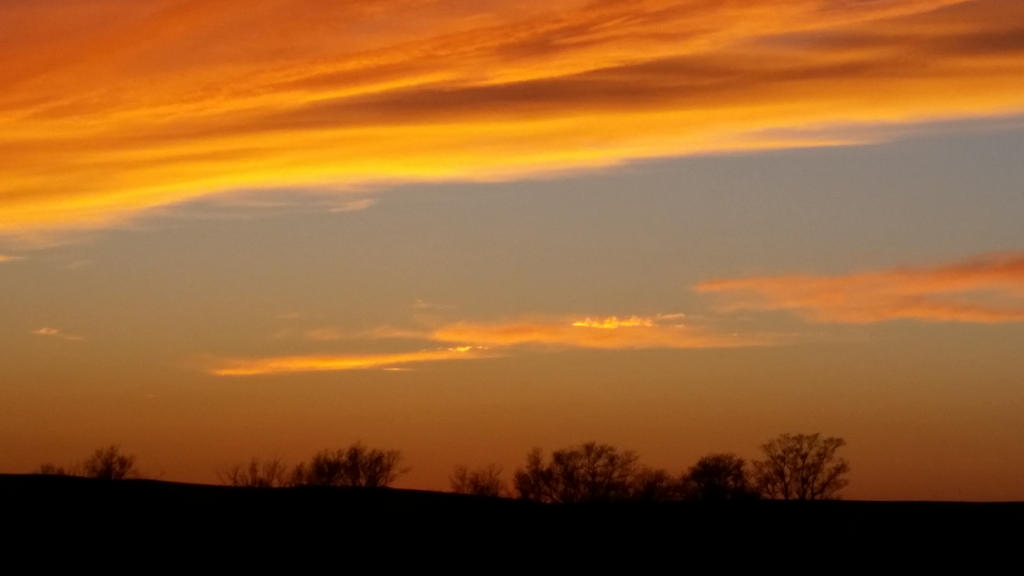 Mandarin Sunset by Soshadilver