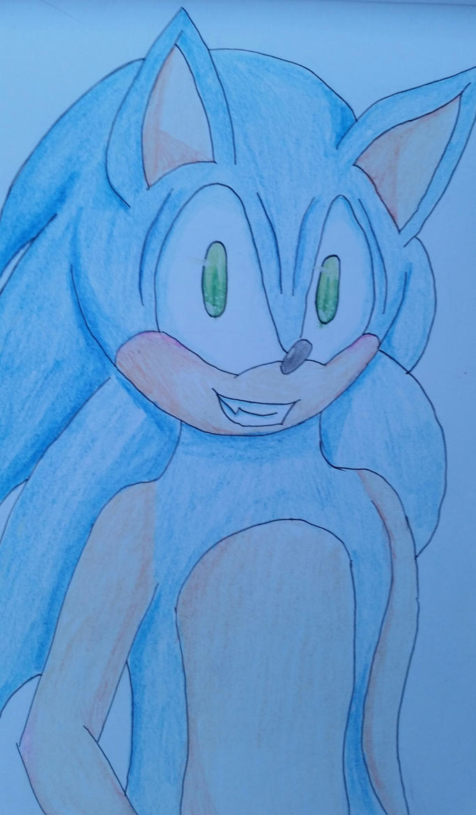 Sonic the Hedgie by Soshadilver